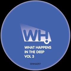 V/A – What Happens In The Deep Vol 3 [WHHA097]